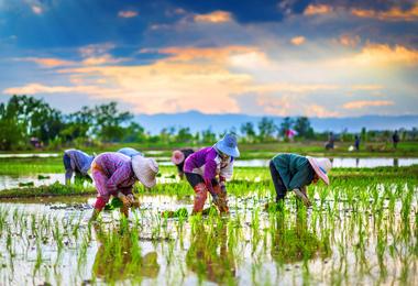 Randonnée Cambodge en pays Khmer, voyage Asie et Océanie