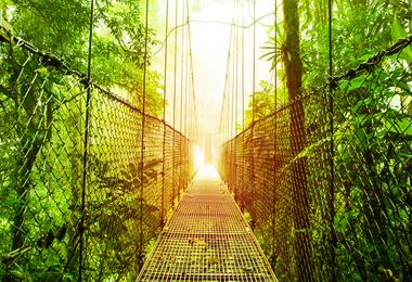 10 bonnes raisons de découvrir le Costa Rica, voyage Amérique Centrale