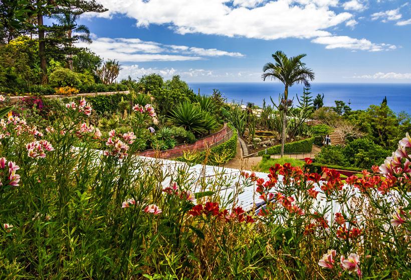 Madère - l'île aux Fleurs, voyage Europe