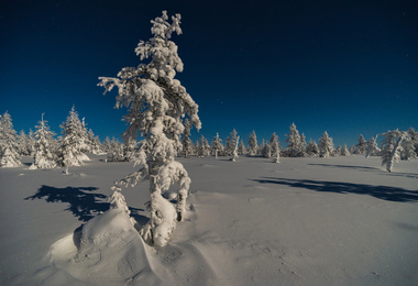 La Finlande au coeur de la nature !, voyage Europe
