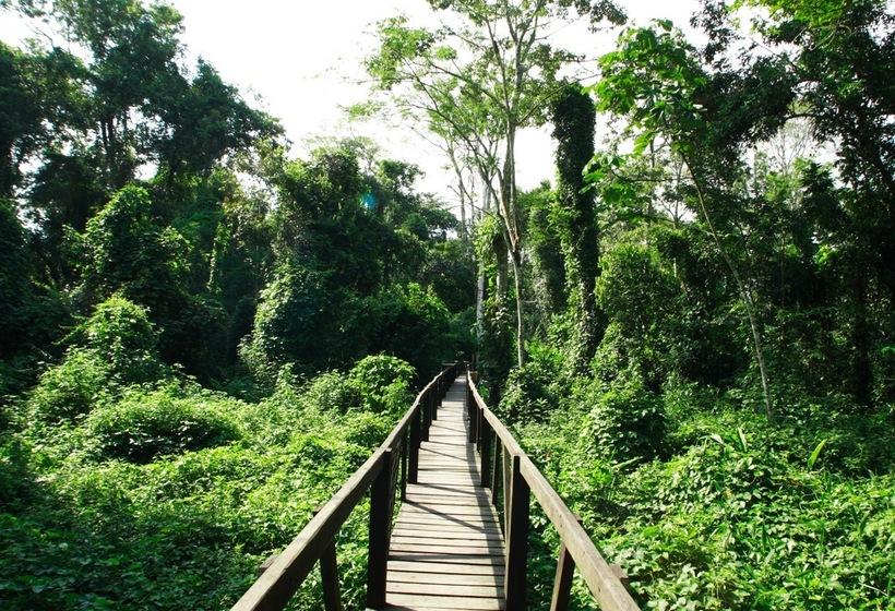 Voyage en Colombie : Immersion en Amazonie, voyage Amérique du Sud
