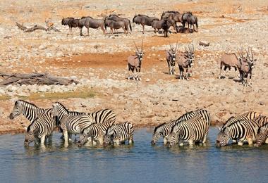 La Namibie Authentique en camping, voyage Afrique