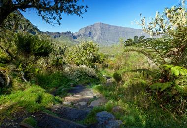 Randonnée en liberté - Ile de la Réunion, voyage Afrique