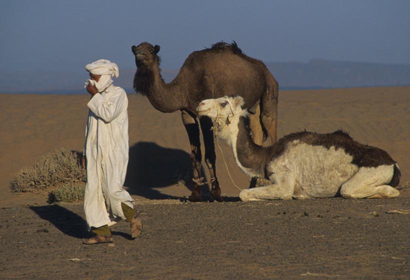 Méharée familiale dans le sud Marocain, voyage Afrique