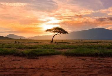 Voyage au Kenya : Ascension du Mont Kenya et Safari, voyage Afrique