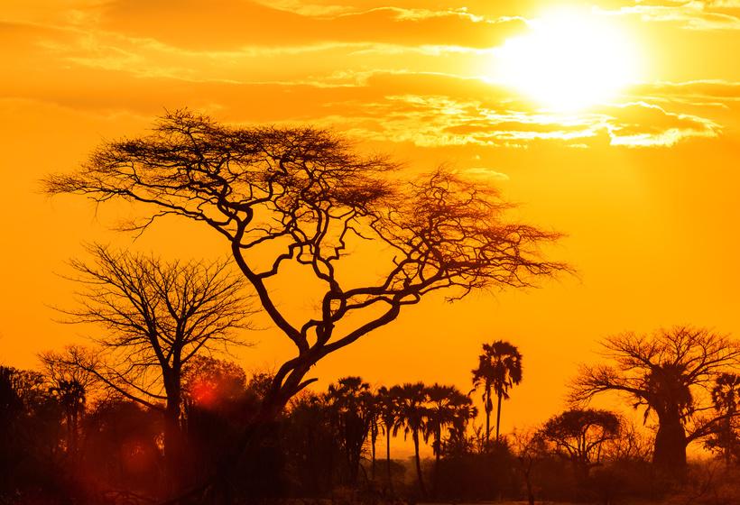 Voyage sur mesure en Afrique du sud en amoureux, voyage Afrique