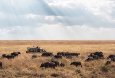 Voyage en Tanzanie : Safari de charme en famille, voyage Afrique
