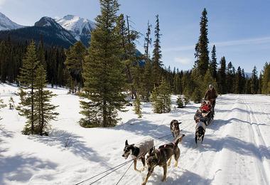 Un hiver en famille au Canada, voyage Amérique du Nord