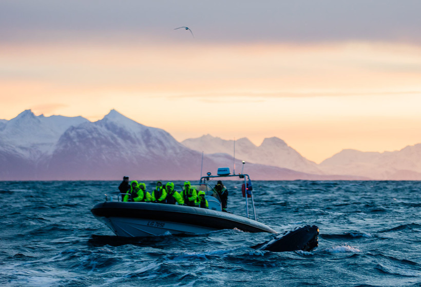 A la conquête du Cap Nord - Autotour en Norvège, voyage Europe
