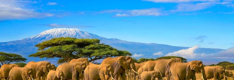 Combiné Kenya / Tanzanie - Voyage en petit groupe, voyage Afrique