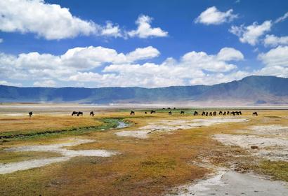 Safari Tanzanie - Les réserves du Nord, voyage Afrique