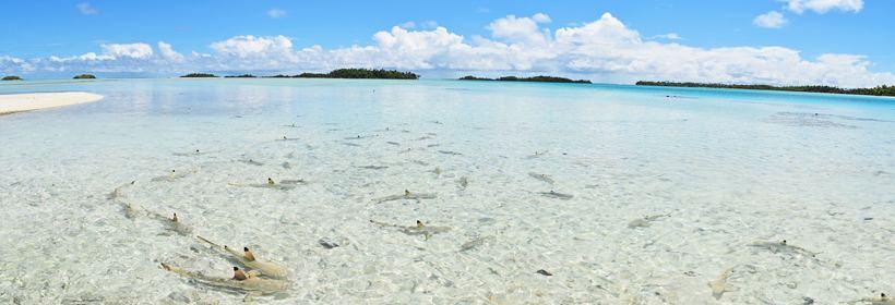 Séjour Éco-touristique en Polynésie, voyage Asie et Océanie