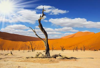 Voyage d'exception en Namibie avec Immersion en pays Himba, voyage Afrique