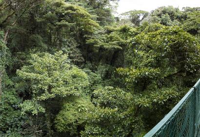 Voyage Costa Rica : Autotour hors des sentiers battus, voyage Amérique Centrale