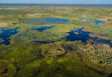 Un des plus beaux safaris au monde - Le Botswana, voyage Afrique