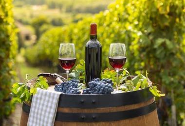 Vignobles et Bien-être dans la région de Bordeaux., voyage Europe
