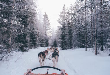 Destination hiver !